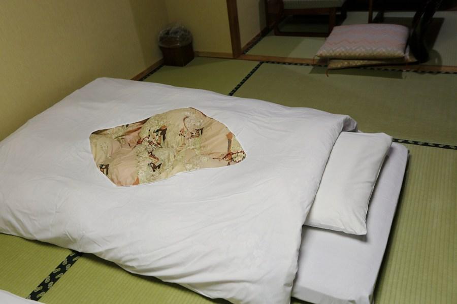 大川莊 (Ookawaso),日本住宿,日本福島,福島住宿,福島自駕遊,蘆牧溫泉 @VIVIYU小世界