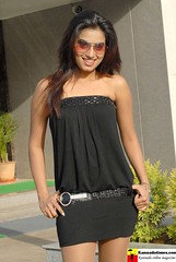 Indian Actress DIMPLE CHOPADE Hot Photos-Set-2 (7)