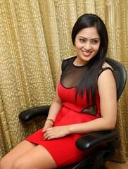 Indian Actress NIKESHA PATEL Hot Sexy Images Set-2  (18)