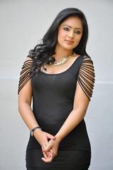 Indian Actress NIKESHA PATEL Hot Sexy Images Set-2  (95)