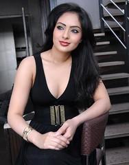 Indian Actress NIKESHA PATEL Hot Sexy Images Set-1 (10)