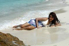 Indian Actress DIMPLE CHOPADE Hot Photos-Set-2 (18)