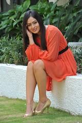 Indian Actress NIKESHA PATEL Hot Sexy Images Set-1 (94)