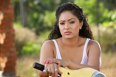 Indian Actress NIKESHA PATEL Hot Sexy Images Set-2  (6)