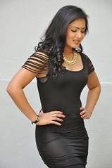 Indian Actress NIKESHA PATEL Hot Sexy Images Set-2  (85)