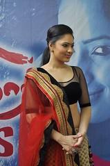 Indian Actress NIKESHA PATEL Hot Sexy Images Set-2  (63)