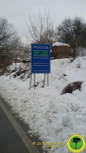 Terremoto Centro Italia 2017_044