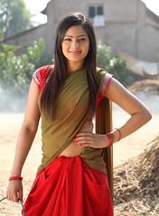 Indian Actress NIKESHA PATEL Hot Sexy Images Set-2  (41)