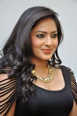 Indian Actress NIKESHA PATEL Hot Sexy Images Set-2  (70)