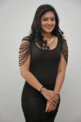 Indian Actress NIKESHA PATEL Hot Sexy Images Set-2  (82)