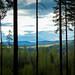 Ut ur skogens djup mot Ljungans dalgång