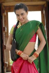 Indian Actress DIMPLE CHOPADE Hot Photos-Set-1 (15)