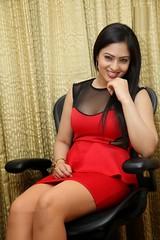 Indian Actress NIKESHA PATEL Hot Sexy Images Set-2  (15)