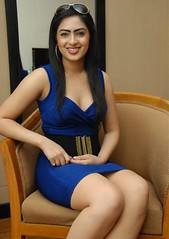Indian Actress NIKESHA PATEL Hot Sexy Images Set-1 (3)