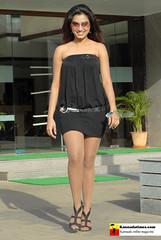Indian Actress DIMPLE CHOPADE Hot Photos-Set-2 (4)