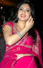 Indian Actress NIKESHA PATEL Hot Sexy Images Set-2  (5)