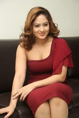 Indian Actress NIKESHA PATEL Hot Sexy Images Set-1 (63)