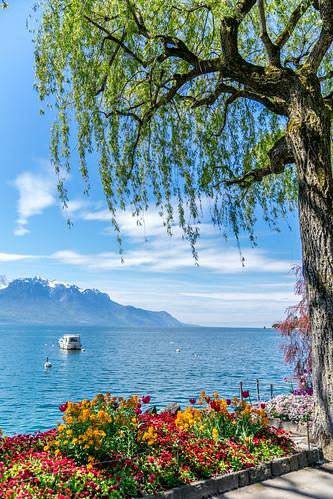 Suisse-01751