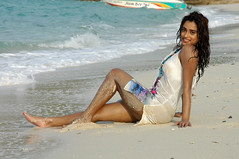Indian Actress DIMPLE CHOPADE Hot Photos-Set-2 (9)