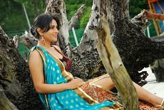 Indian Actress Ramya Hot Sexy Images Set-2  (81)