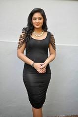 Indian Actress NIKESHA PATEL Hot Sexy Images Set-2  (92)