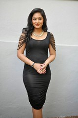 Indian Actress NIKESHA PATEL Hot Sexy Images Set-2  (92)
