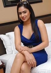 Indian Actress NIKESHA PATEL Hot Sexy Images Set-1 (43)