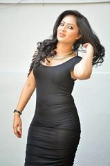 Indian Actress NIKESHA PATEL Hot Sexy Images Set-2  (96)