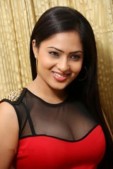 Indian Actress NIKESHA PATEL Hot Sexy Images Set-2  (30)