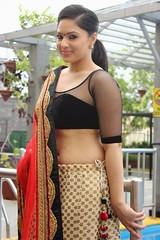 Indian Actress NIKESHA PATEL Hot Sexy Images Set-2  (31)