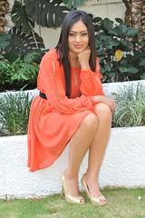 Indian Actress NIKESHA PATEL Hot Sexy Images Set-1 (91)