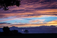 Brilliant dawn in the Dutch polder...