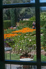 """Garden-Thru-the-Window • <a style=""""font-size:0.8em;"""" href=""""http://www.flickr.com/photos/26038437@N06/35665238850/"""" target=""""_blank"""">View on Flickr</a>"""