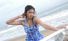 Indian Actress Haripriya Hot Sexy Images Set-2  (85)