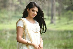 Indian Actress Haripriya Hot Sexy Images Set-2  (24)