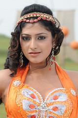 Indian Actress Haripriya Hot Sexy Images Set-2  (13)