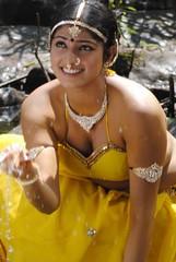 Indian Actress Haripriya Hot Sexy Images Set-2  (18)