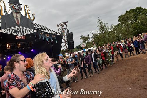 crowds for Professor Elemental at Nozstock 2017