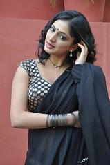 Indian Actress Haripriya Hot Sexy Images Set-2  (7)