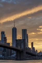 Brooklyn Bridge 3 - NYC
