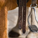 Stirrup - a good start to get up on a horse