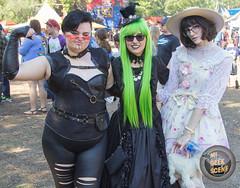 Michigan Renaissance Festival 2017 Revisited Sunday 85