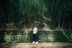 烏嘎彥竹林|Taiwan