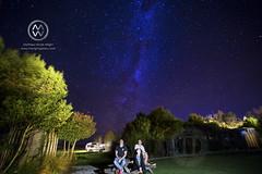 NZ17_wright6004