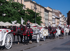 Horse-drawn baggies in Cracow