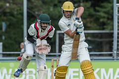 070fotograaf_2017082020170820_Cricket HCC1 - ACC 1_FVDL_Cricket_3412A.jpg
