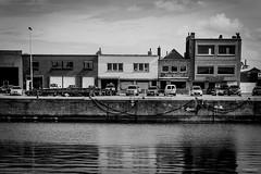 2017 Vlaamse Havendag Oostende  - Vismijn