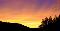 Sunset & Black