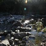 o rio (13)
