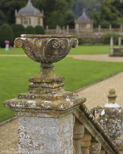 Garden; Montacute House / National Trust